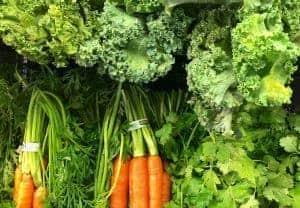 Zanahorias, lechugas, hierbas